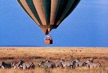 Tanzania Collection / Going on safari in Tanzania, means travelling to remote places. If you have the time, travel by road. http://africatriedandtested.com/before-you-go/travel-tanzania/