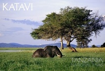 National Park - Katavi / The third largest National Park in Tanzania with approximately 4,471 square kilometers (1,726 sq mi) in area, however one of the more remote and less visited... www.africatriedandtested.com