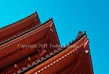 Japan / by Bo Tamaki