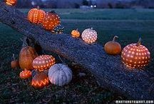 Halloween / Quite possibly my favorite holiday of the year!
