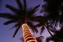 Hawaii / by Kristina Herold