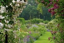 Green gardens / Green gardens, trees and pathways