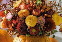 Pumpkins!! / by Pam Adams