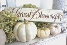 Fall Decor / fall decor, pumpkins, lake style decorations, centerpiece, pumpkins, hydrangas, autumn decor.