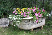 Garden Love / by Pam Adams