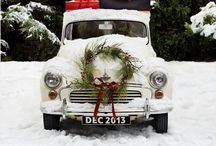 -winter wishes- / by Brigette Rau-Edgell