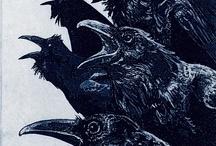 Crow's Nest / My love of crows / by Pam Kromenacker