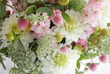 Arrange It / Flower arrangements / by Pam Kromenacker