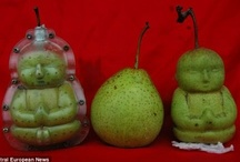 Buddha Buddies / Buddha, Zen, Yoga / by Pam Kromenacker