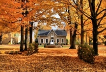 home sweet home / by Samantha Elizabeth