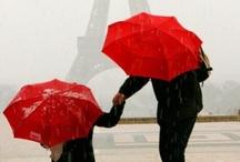 -under an umbrella- / by Brigette Rau-Edgell
