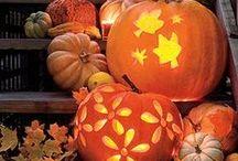 potirons / pompoen / pumpkins