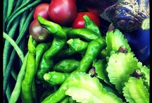 freshly-harvested vegetables