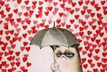 Cats are jerks / by Renée Bugg