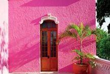Color Craze: Pink