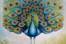 Pretty As A Peacock / by ᏋᏝᏋᏁᎥ