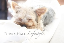 Love Our Dog / by Debra Hall Lifestyle