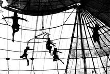 Aerial inspiration / I teach and perform in the Repertory Company at Canopystudio.org  / by Julie Phillips