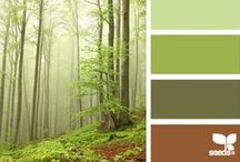 Color Palettes / by Shelly Long