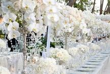 Weddings / by Jennifer Cripps
