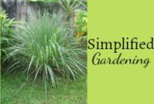 Simplified Gardening / Tips and tricks to make gardening simple and easy. / by Mystie Winckler