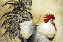 roosters / by Marsha Rainey