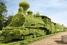 Garden ideas / by 101 nya idéer
