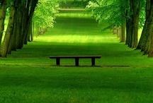 Emerald, Green, Teal