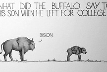 Funnies / by Emily Nadolski