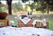 PICNIC afternoon in the park /  let's prepare our gourmet picnic baskets