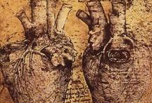 Art - Leonardo Da Vinci / My favourite works by Leonardo Da Vinci. / by Vanessa Sherwood