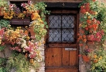 ~beautiful doorways~ / by Theresa Fulgoni-Chittock