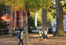 Happy Fall, Y'all / Anything and everything Ole Miss Rebels love about fall!