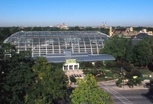 Garfield Park Conservatory / by Chicago Park District