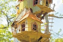 ~fancy bird houses~