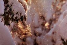 loveliness / by Bryn Aszman