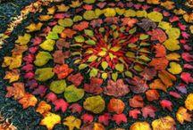 Autumn - Fall / by Paula Lopez@Kinderoo Children's Academy ≈≈