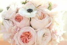 WEDDING. / inspiration! / by Alyssa Fleps