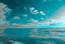 And I think to myself...What a Wonderful World! / by Patti Brockhoff Hobin
