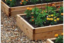 Grow me a garden