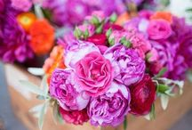 Bloom + Blossom / Floral arrangements and bouquets so pretty you can almost smell them