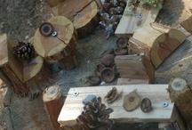 Reggio Emilia: Language of Wood