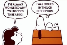 Comic Break / Need a comic break from your interview preparation? Enjoy these funnies... / by Acing My Interview