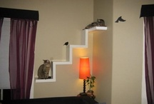Home Decor - Cat Ideas