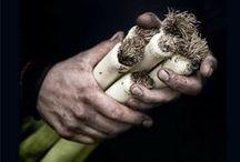 Food photography / by Las Cosas de Cósima