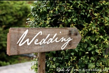 ~WEDDINGS~ / There's nothing more fun than planning a wedding! But since both of my daughters are already happily married, I will just have fun planning a fairy tale wedding on Pinterest. / by Phoebe