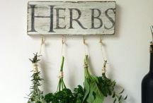 GARDEN ~ Herbs /