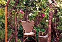 gardening ideas / by Melody Baldissero