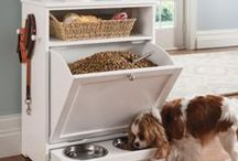 Pet Homes / Pinterest-perfect ideas for your pets!