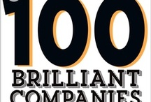 100 Brilliant Companies of 2013 / The best ideas come from going about our lives -- encountering, then trying to resolve, major obstacles and quotidian annoyances. The companies featured here turned brilliant ideas into business solutions. Check back every day to see 10 more brilliant companies. / by Entrepreneur